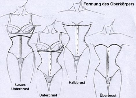 Formung des Oberkörpers